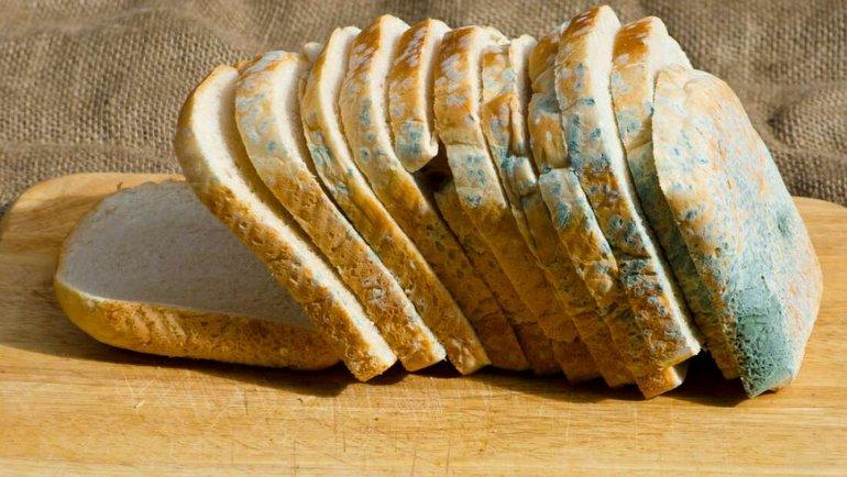 Küflü ekmeğin küfsüz kısmı yenir mi