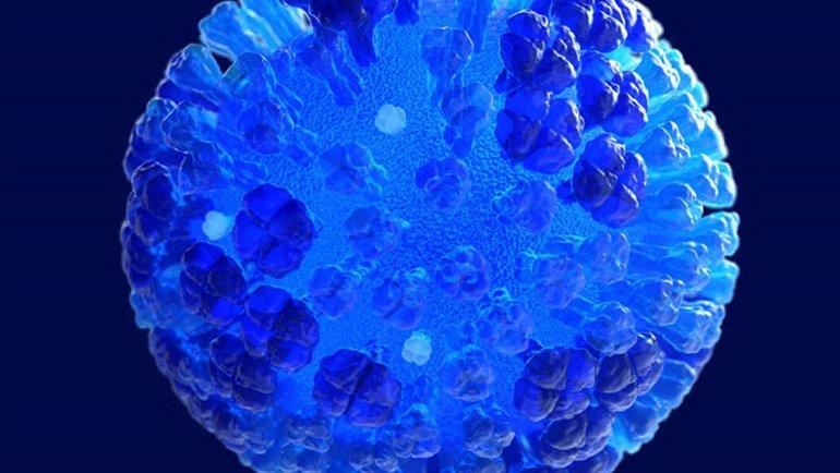 COVID-19'un öldürdüğü virüs